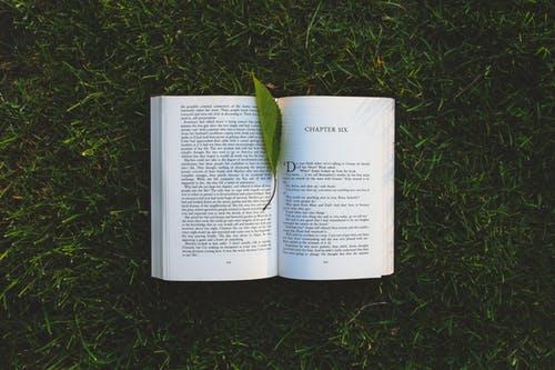 book_chap