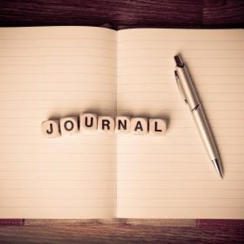 xls_journal